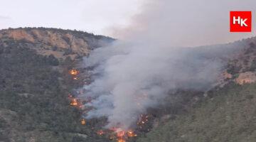 Bir orman yangını daha başladı! Adana yanıyor!