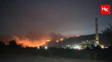 Kemerköy Termik Santrali'nde yangın tehlikesi! Ağaçlar kesilecek