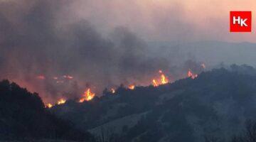 O ülkeden Türkiye'ye yangın söndürme helikopteri yardımı