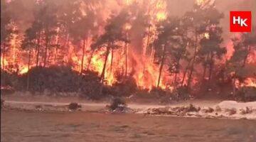 Tatilcilerin eğlencesi yüzünden, yangına müdahale engellendi!